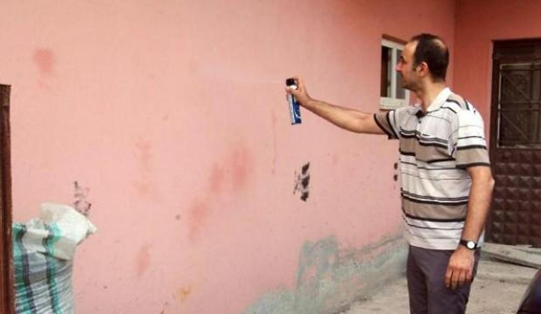 Milyonlarca böcek istila etti: Mahalleli önlem alamıyor