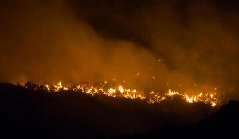 Orman yangınları 9 bin kişiyi yerinden etti
