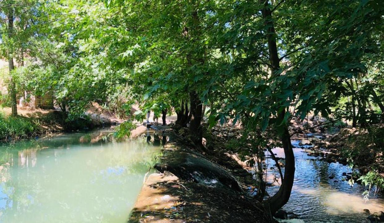 Savur Yeşilsu doğa güzelliğiyle ziyaretçilerini bekliyor