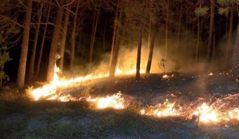 Pendik'te sabaha karşı korkutan yangın
