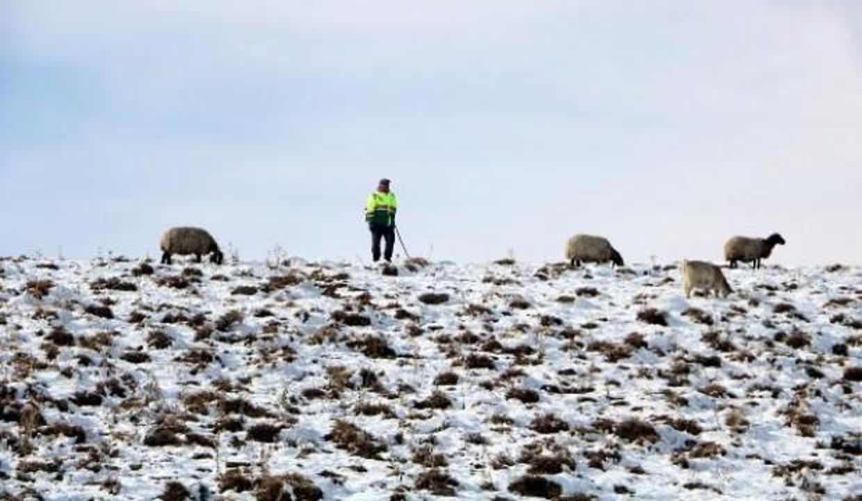 Erken yağan kar besicileri hazırlıksız yakaladı