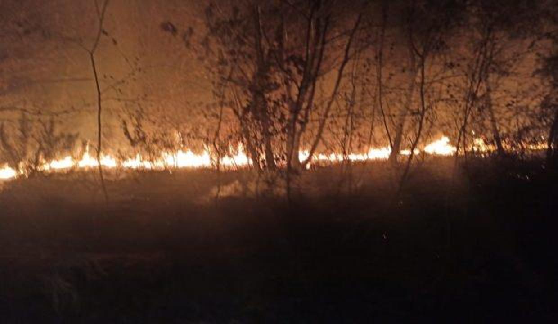 FETÖ'nün kilit ismi Adil Öksüz soruşturmasında kazı yapılan alanda yangın