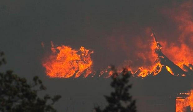 Niğde'de ahırda çıkan yangında 171 kuzu telef oldu