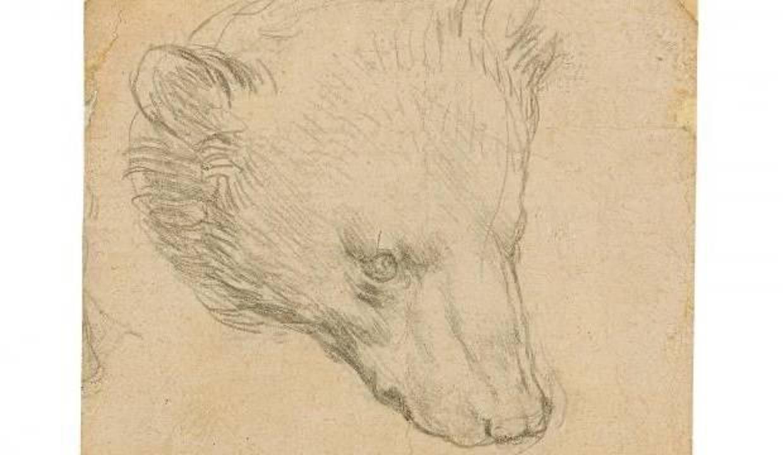 """Da Vinci'nin """"Ayı Kafası"""" çizimine rekor fiyat tahmini"""