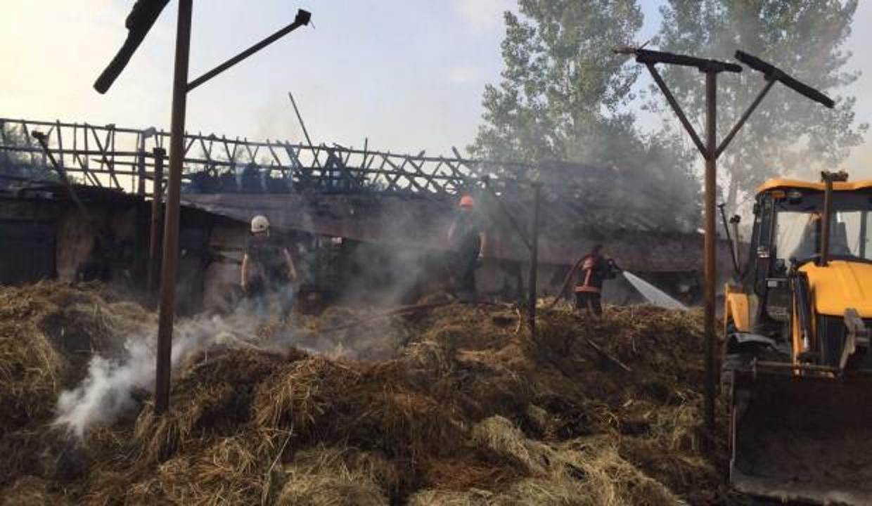 Çiftlikteki yangında 4 büyükbaş hayvan telef oldu, yüzlerce saman yandı