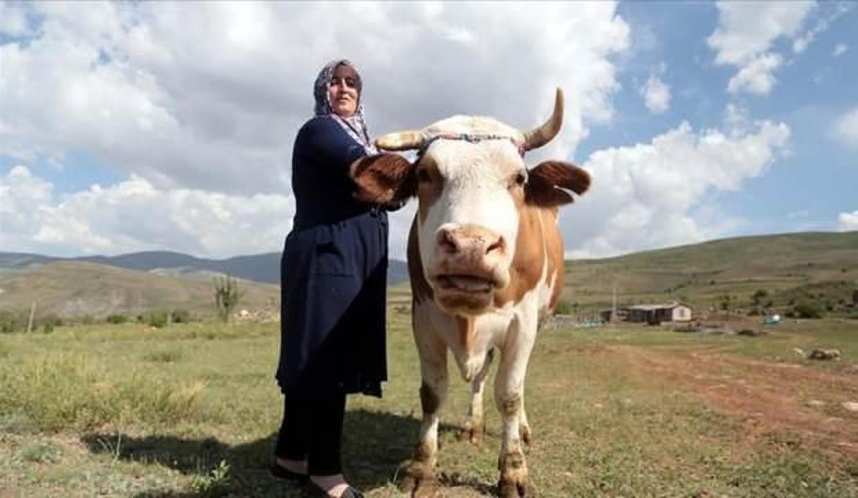 3 çocuk annesi kadın köyüne döndü, hem kanseri yendi hem girişimci oldu!