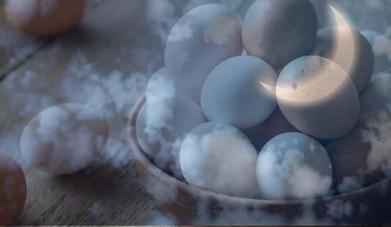 Rüyada yumurta toplamak neye işaret eder? Rüyada beyaz yumurta ne anlama gelmektedir?
