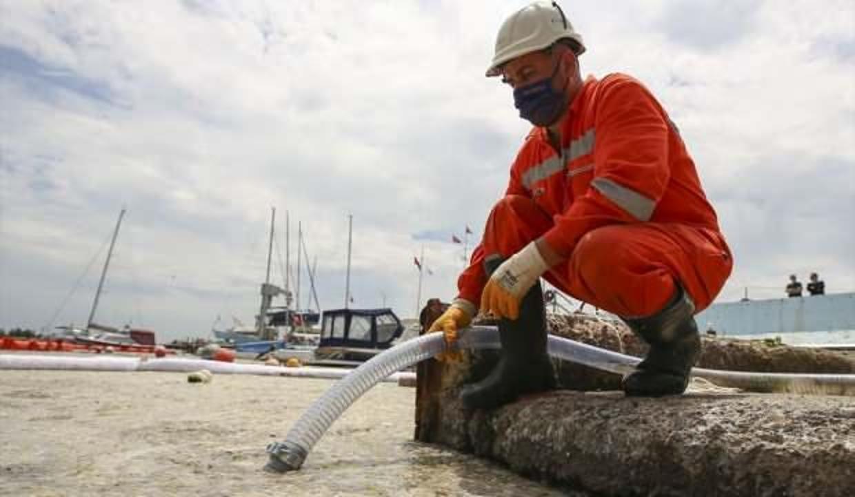 Test sonuçları açıklandı! Müsilajlı balık ve midye yenir mi?