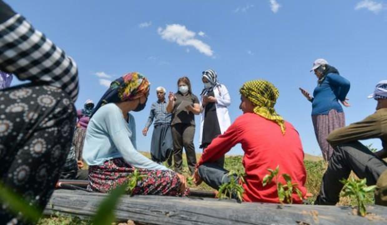 Mevsimlik işçiler aşıya gidemedi, sağlık ekipleri tarlaya indi