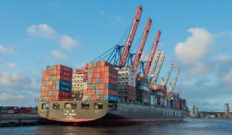 Gıda ve tarım ihracatı ilk 5 ayda yükseldi