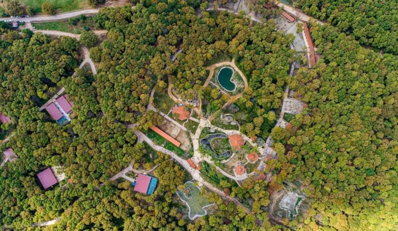 Dünyanın En iyi Ekolojik Destinasyonu: Ormanya