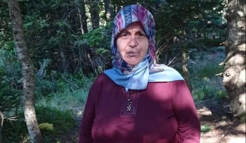 Piknik sırasında kayboldu! Uludağ'da arama çalışmaları sürüyor
