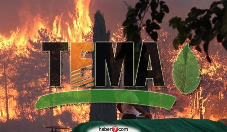 TEMA Vakfı kampanya başlattı! TEMA Vakfı fidan bağışı nasıl yapılır?