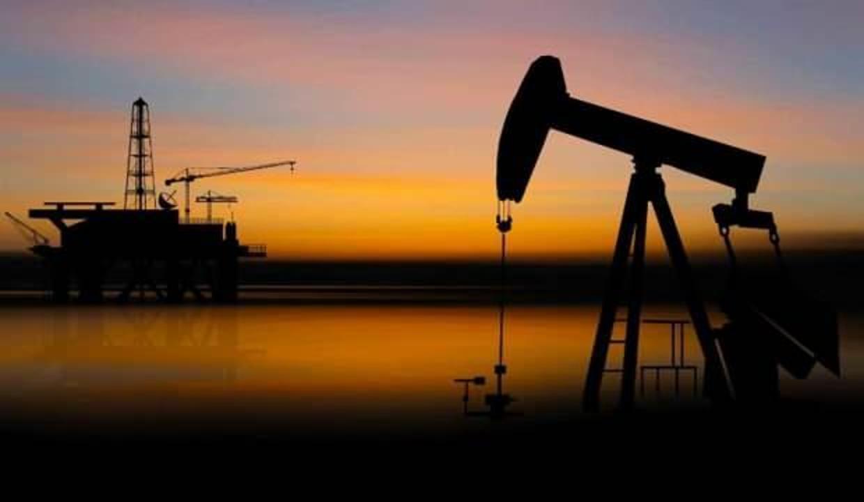 Bir ilimizde petrol aranacak