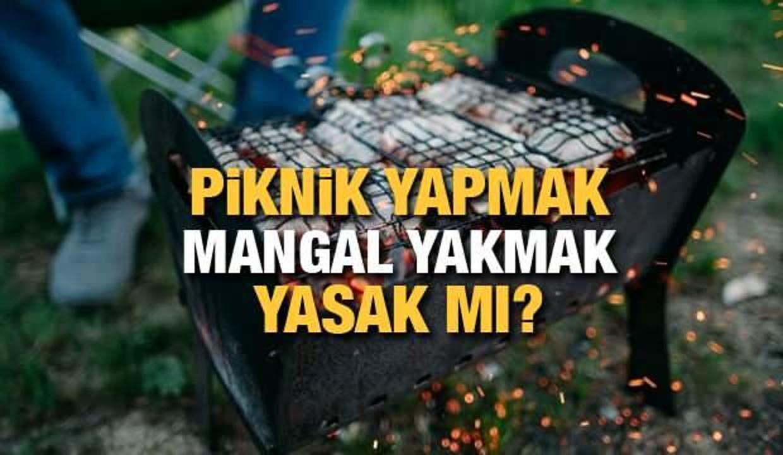 Piknik yapmak yasak mı? Hafta sonu piknik (mesire) alanlarında mangal yapmak yasak mı?
