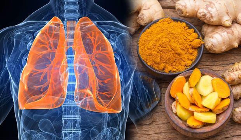 Akciğer sağlığını koruyan besinler nelerdir? Akciğer hastalıklarına iyi gelen 10 sağlıklı besin!