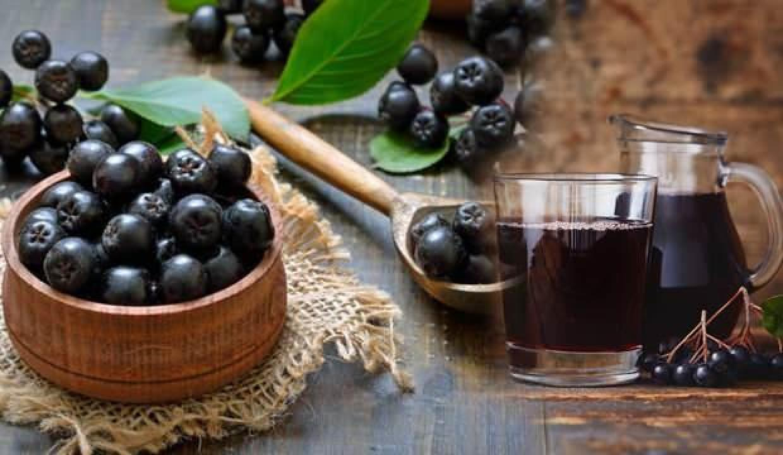 Aronia meyvesi faydaları nelerdir? Aronya nedir ve hangi hastalıklara iyi gelir?
