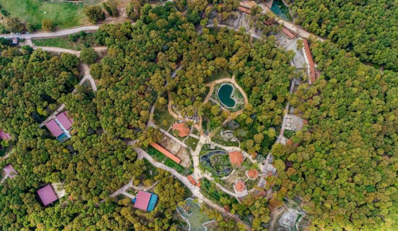 Avrupa'nın en büyük doğal yaşam parkı Ormanya'ya büyük ödül