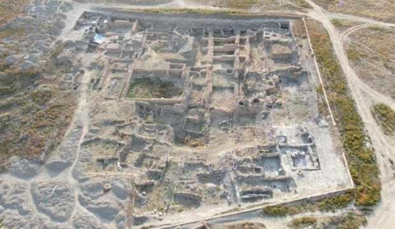 Kültepe'de 4 bin sene önce yaşamış aslana ait kemik bulundu