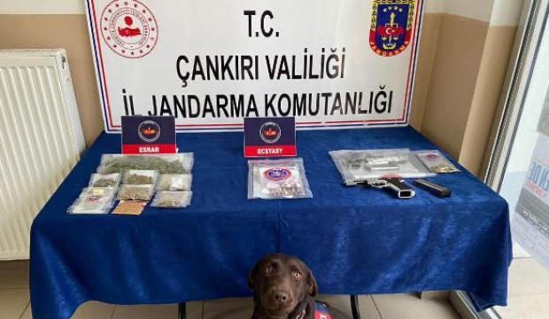 5 ildeki uyuşturucu operasyonunda 13 tutuklama