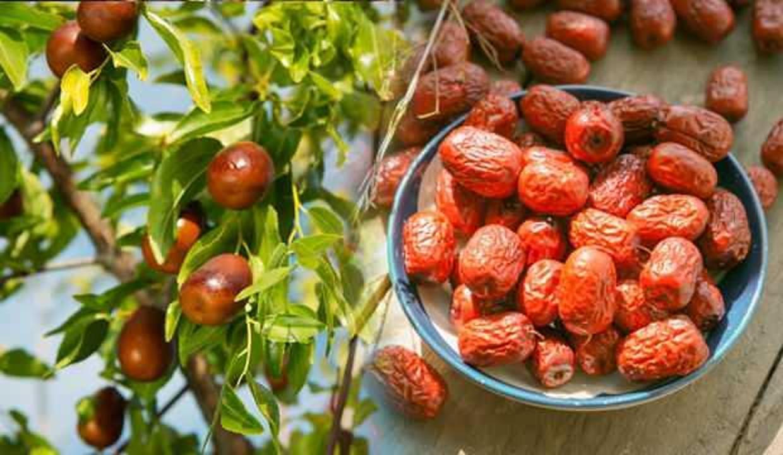 Hünnap meyvesi faydaları nelerdir? Kuru hünnap nasıl tüketilir?
