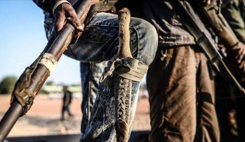 Nijerya'da 76 silahlı çete üyesi yakalandı
