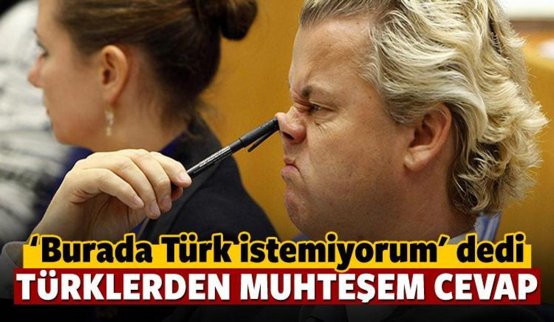 Türk istemiyorum diyen Wilders'a tokat gibi yanıt