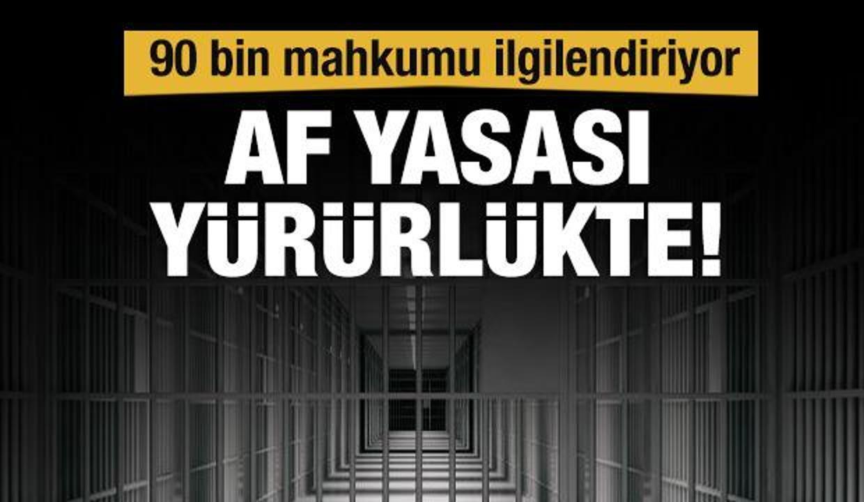 Resmi Gazete'de yayımlandı, infaz düzenlemesi yürürlükte
