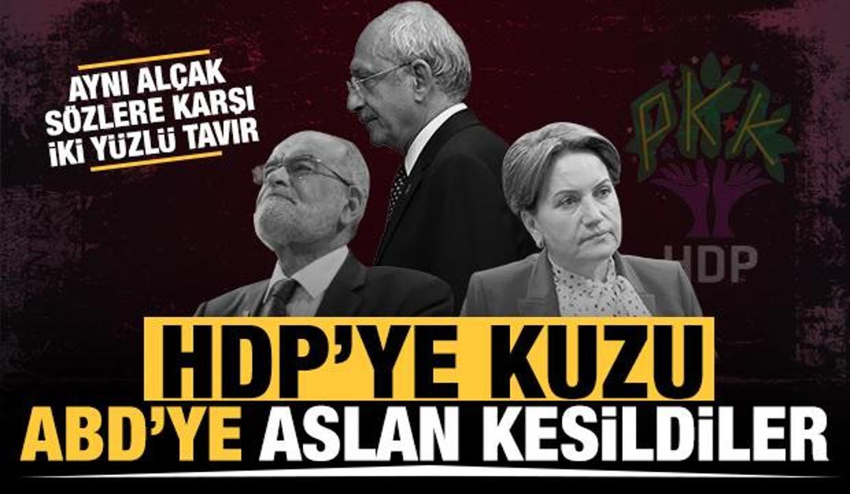 Muhalefetin acınası hali: HDP'ye kuzu, ABD'ye aslan kesildiler