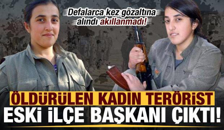 Son dakika: Öldürülen kadın terörist eski HDP İlçe başkanı çıktı!