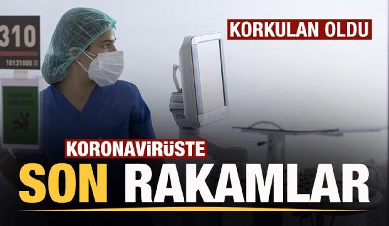 Son dakika: 23 Temmuz koronavirüs tablosu! Vaka, Hasta, ölü sayısı ve son durum açıklandı