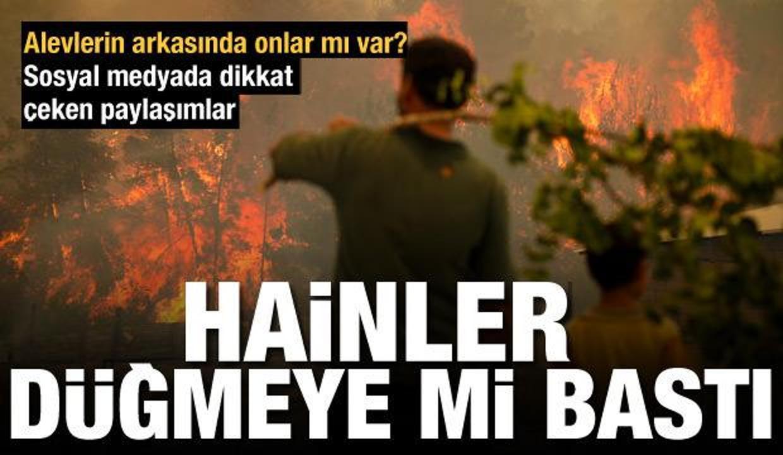 Türkiye'de ormanları kim yakıyor? Yangınlarda terör izleri